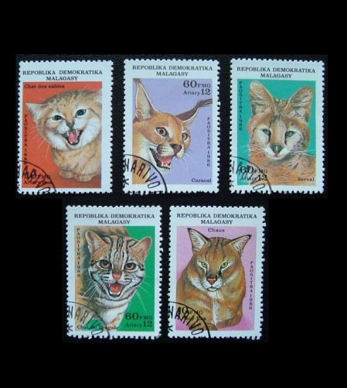 MADAGASCAR WILD CAT STAMPS 1986