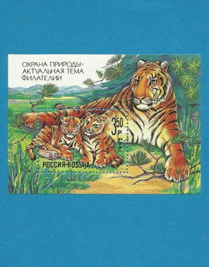 RUSSIA TIGER AND CUBS NATURE CONSERVATION MINISHEET STAMP BLOC 1992
