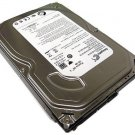 "Seagate 320GB 8MB Cache 3.5"" SATA2 3.0Gb/s Internal Desktop Hard Drive -PC/DVR"