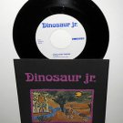 "DINOSAUR JR. little fury things , in a jar 7"" Vinyl Record , numero uno records"