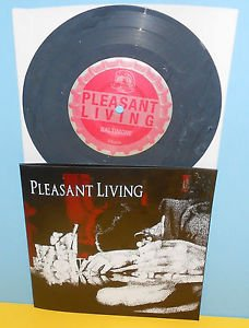 "PLEASANT LIVING s/t ep 7"" Record A389 GREY Vinyl , HARDCORE , trapped under ice"