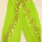 Green Belly Dance Top & Pant Set -- V0290