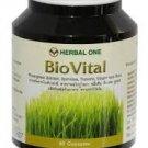 Bio Vital (from wheat) Herbal Day (60 capsules).