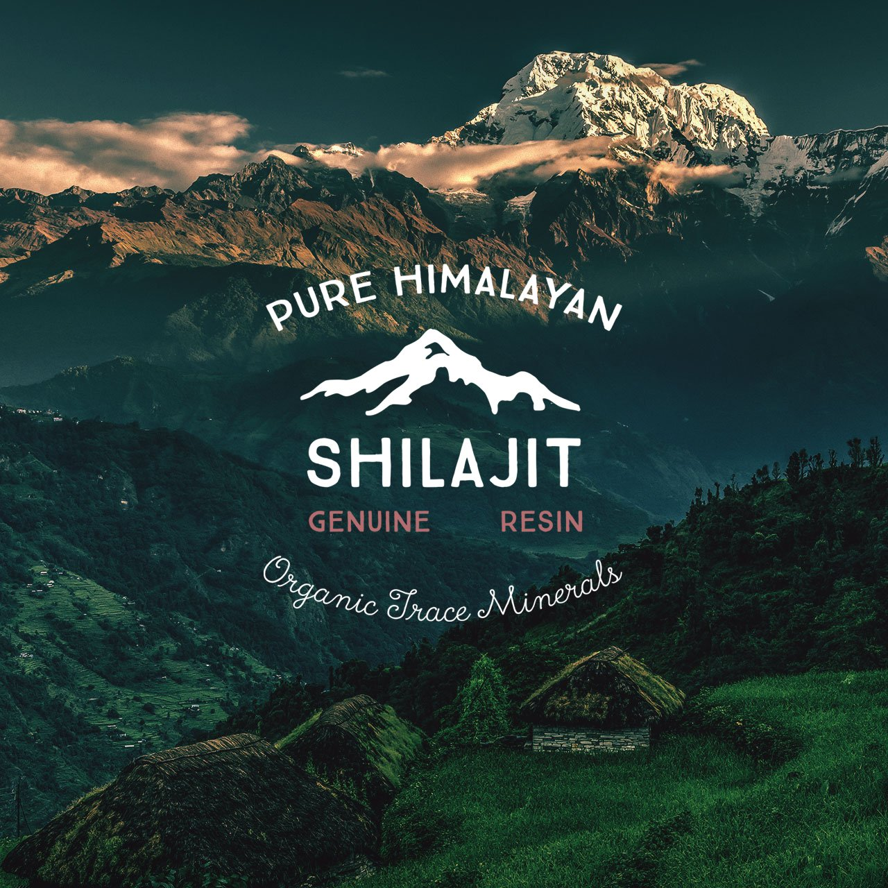 100% Pure Shilajit Resin Authentic himalayan mumijo mumiyo 20g WITHOUT DILUTION