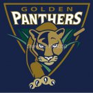 Florida International Golden Panthers Helmet Flag 90x150cm Banner style 3