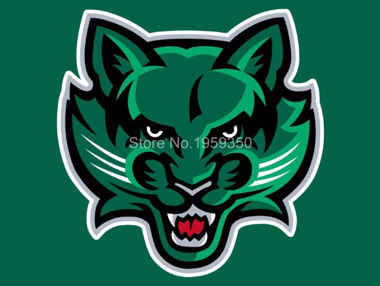 Binghamton Bearcats Flag 3ftx5ft Banner 100D Polyester NCAA Flag style 1