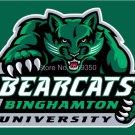 Binghamton Bearcats Flag 3ftx5ft Banner 100D Polyester NCAA Flag style 3