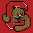 Cornell Big Red Helmet Flag 3ftx5ft Banner 100D Polyester NCAA Flag 2 metal grommets style 2