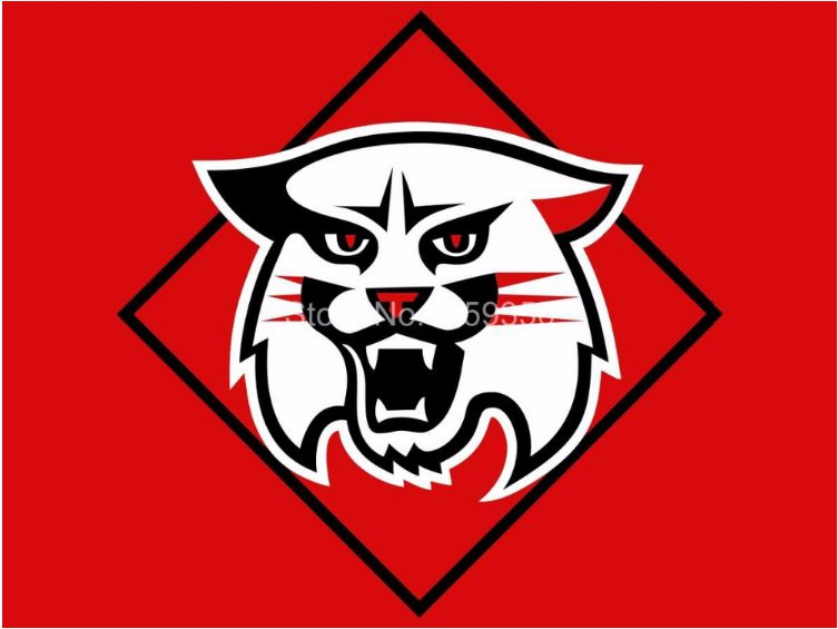 Davidson Wildcats flag 3ftx5ft Banner 100D Polyester NCAA Flag style 2