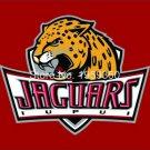 Jacksonville Jaguars 3FTx5FT 100D polyester Banner 90x150cm Flag New