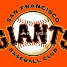 San Francisco Giants Personalized Flag 3 x 5ft  Banner metal holes Flag