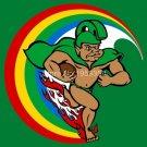 Hawaii Rainbow Warriors Flag 3ftx5ft Banner 100D Polyester NCAA Flag(2)
