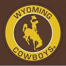 3ftx5ft wyoming cowboys University Union Banner 100D Polyester custom flags
