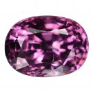 2.4 Ct. Massive Intense Pink Spinel Rare Investment Gem With GLC Certify