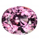 2.17 Ct. Natural Top Hot Pink Spinel Loose Gemstone With GLC Certify