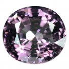 2.75 Ct. Shocking Beautiful Hot Purple Spinel Loose Gemstone With GLC Certify