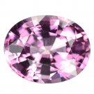 2.03 Ct. Oval Intense Pink Natural Spinel Loose Gemstone With GLC Certify