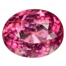 10.91 Ct. Amazing Luster Natural Hot Pink Tourmaline Loose Gemstone With GLC Certify