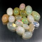 43.74 Ct. Natural Ethiopia Solid Opal Strong Play Of Color Lot Loose Gemstone With GLC Certify