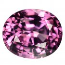 3.21 Ct. Shocking Beautiful Hot Intense Pink Natural Spinel Loose Gemstone With GLC Certify