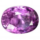 2.04 Ct Blazing Luster Oval Natural Intense Pink Sapphire Loose Gemstone With GLC Certify