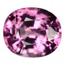 3.03 Ct. Rich Imperial Hot Pink Tanzania Spinel Loose Gemstone With GLC Certify