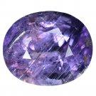 3.36 Ct. Pear Shape Cut Intense Purple Unheated Sapphire Loose Gemstone With GLC Certify