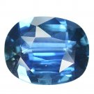 1.84 Ct. Succulent Top Luster Royal Blue Sapphire Loose Gemstone With GLC Certify