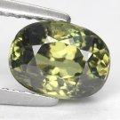 2.1 Ct. Wonderful Luster Natural Demantoid Garnet Loose Gemstone With GLC Certify