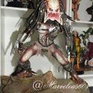 The Art Department Classic Predator 1/4  Read