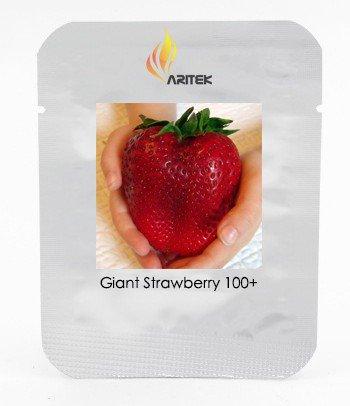 Rarest Heirloom Super Giant Japan Red Strawberry Organic Seeds