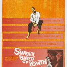 Sweet Bird Of Youth (1962) - Paul Newman DVD