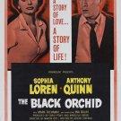 The Black Orchid (1959) - Sophia Loren DVD