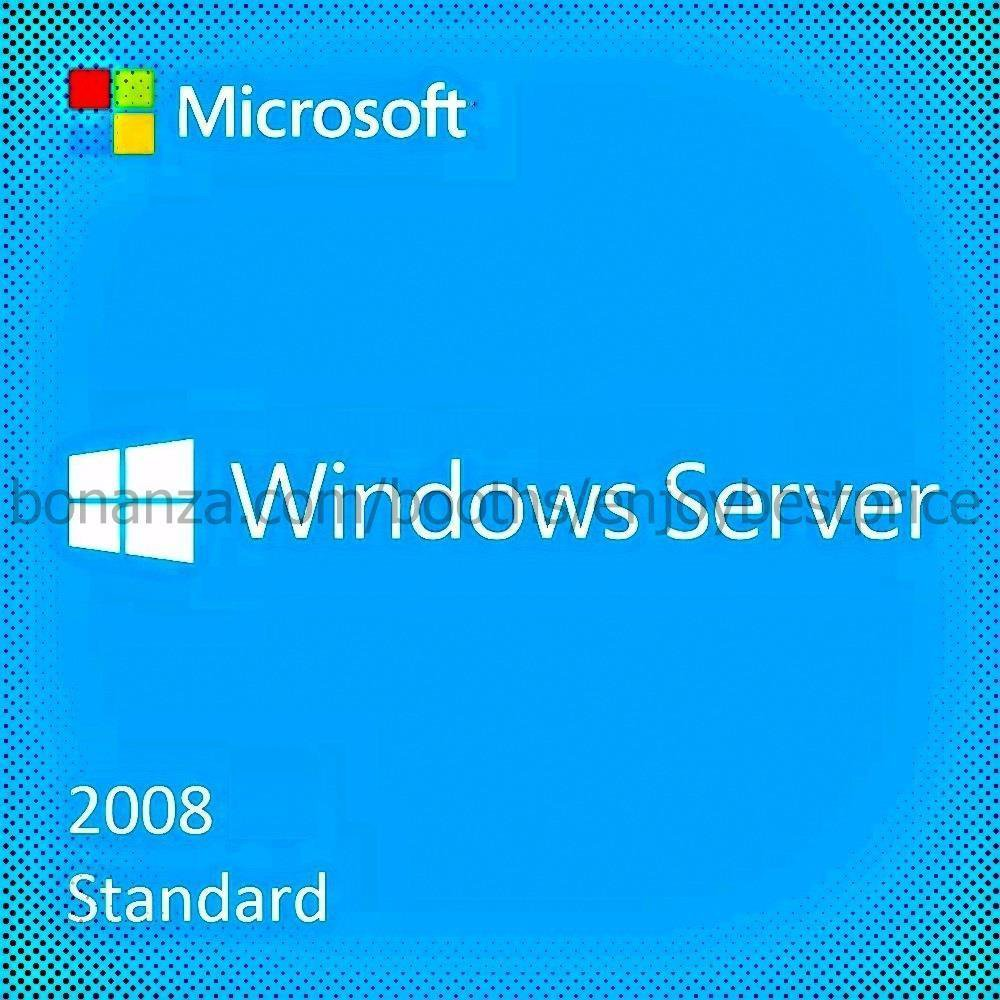 Microsoft Windows Server 2008 Standard SP2 32 64 bit Lifetime KEY Download Link