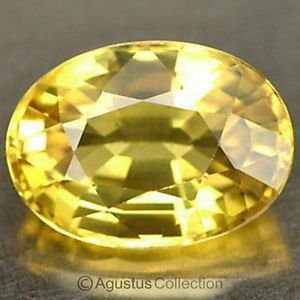 0.60 cts Yellow SAPPHIRE Oval Facet-cut Natural Gemstone Sri Lanka Ceylon