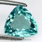 1.73 cts Paraiba Blue APATITE Trillion Facet-cut Natural Gemstone Madagascar