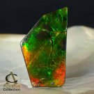 AMMOLITE Ammonite Rare Gem Stone from Canada 45 ct / 44.61 x 26.11 x 4.04 mm