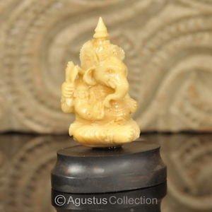 Hindu God GANESHA Carving TAGUA NUT Marvelous Carved Art Sculpture STATUE 1.73�
