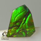 AMMOLITE Ammonite Rare Gem Stone from Canada 19 ct / 22.60 x 22.09 x 3.54 mm