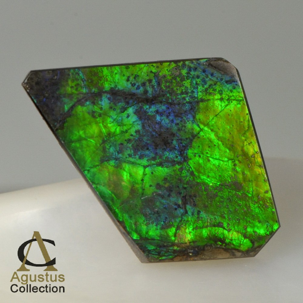 AMMOLITE Ammonite Rare Gem Stone from Canada 20 ct / 30.86 x 19.84 x 3.54 mm