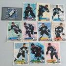 All 11 Tampa Bay Lightning TEAM SET 1995/96 Panini Hockey Sticker Cards