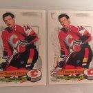 2 1995/96 Theo Fleury Calgary FLAMES PANINI Hockey Sticker Card # 237