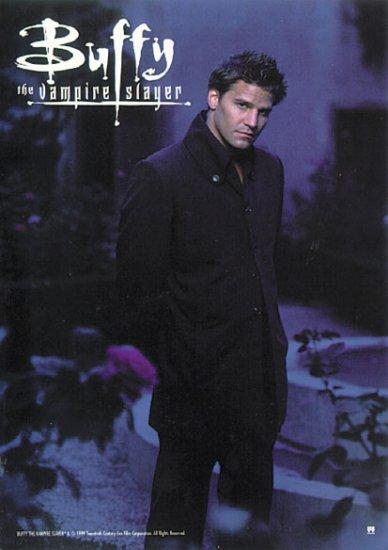 Buffy The Vampire Slayer - David Boreanez Poster