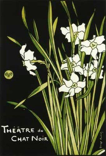 Theatre Du Chat Noir Poster