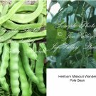 75 Seeds Missouri Wonder Pole Bean snap or dry Tender flavorful multi purpose Heirloom Natural
