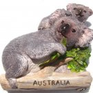 Souvenir Koala, AUSTRALIA , High Quality Resin 3D Fridge Magnet
