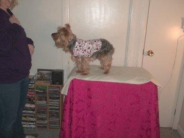 Girlie XS Warm Dog Coat - Handmade Pink Flowered