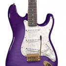 Jay Turser JT-300QMT Colors Available 6 String Electric Guitar   www.tmscad.ecrater.com