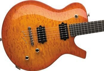 Parker PM20 Flame Maple Tabacco Sunburst w/ Parker Gig Bag FREE SHIPPING www.tmscad.ecrater.com