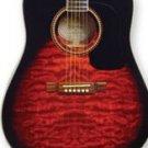 Washburn D10QSB Quilted Maple Sunburst Acoustic w/Case FREE SHIP  www.tmscad.ecrater.com